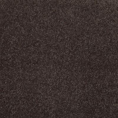 Shaw Floors Roll Special Xv930 Peat Moss 00715_XV930