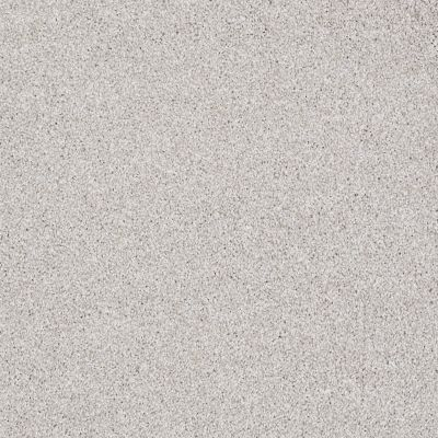 Shaw Floors Roll Special Xv931 Cement Mix 00116_XV931