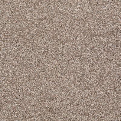 Shaw Floors Roll Special Xv931 Sombrero 00710_XV931