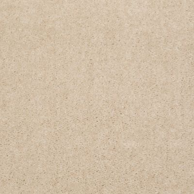 Shaw Floors Roll Special Xy125 Divine 00100_XY125