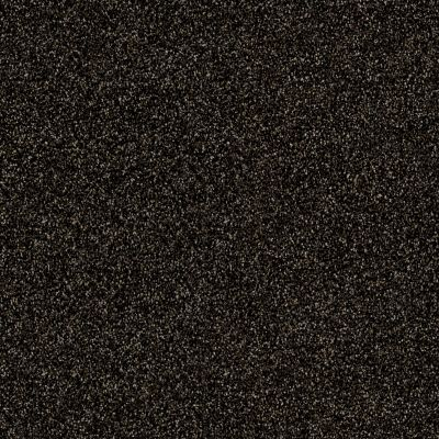 Shaw Floors Roll Special Xy158 Rich Earth 00704_XY158