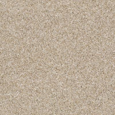 Shaw Floors Roll Special Xy226 Creamy Silk 00100_XY226