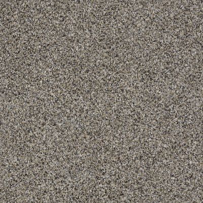 Shaw Floors Roll Special Xy226 Burnt Ash 00500_XY226