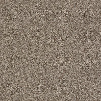 Shaw Floors Roll Special Xy228 Dappled 00501_XY228