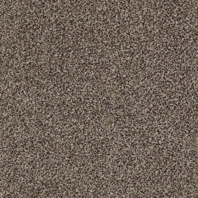 Shaw Floors Roll Special Xy228 Mountain Rock 00502_XY228