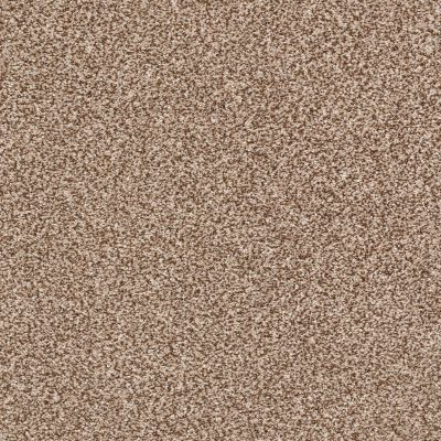 Shaw Floors Roll Special Xy232 Sooty Air 00700_XY232