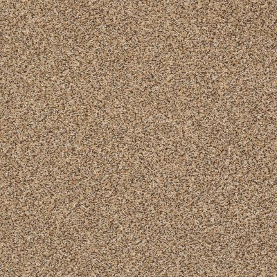 Shaw Floors Roll Special Xy232 Natural Wood 00701_XY232