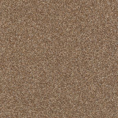 Shaw Floors Roll Special Xy232 Chestnut 00703_XY232