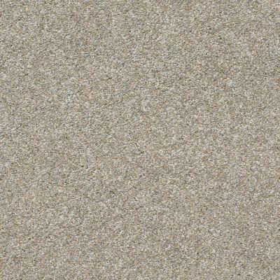 Shaw Floors Roll Special Xz004 Misty Harbor 00510_XZ004