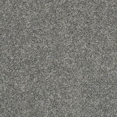 Shaw Floors Roll Special Xz005 Sparrow 00504_XZ005
