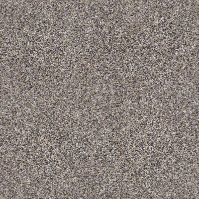 Shaw Floors Value Collections Xz141 Net Reflection 00500_XZ141