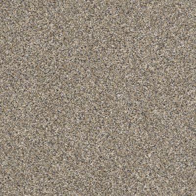 Shaw Floors Value Collections Xz143 Net Pebble Walk 00102_XZ143