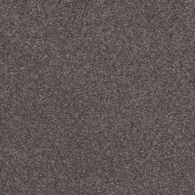Shaw Floors Value Collections Xz147 Net Buckthorn 00702_XZ147