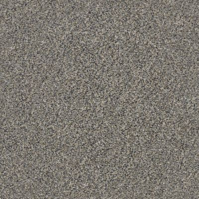 Shaw Floors Value Collections Xz149 Net Fleeting Fawn 00105_XZ149
