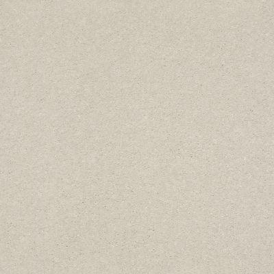 Shaw Floors Value Collections Xz151 Net Minimalist 00100_XZ151