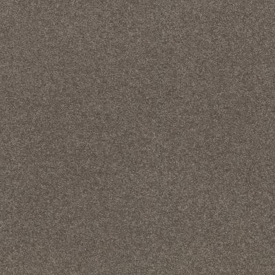 Shaw Floors Value Collections Xz159 Net Pewter 00701_XZ159