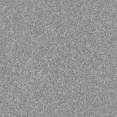 Shaw Floors Value Collections Xz163 Net Arctic Shadow 00521_XZ163