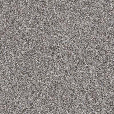 Shaw Floors Roll Special Xz164 Cedar Ridge 00721_XZ164