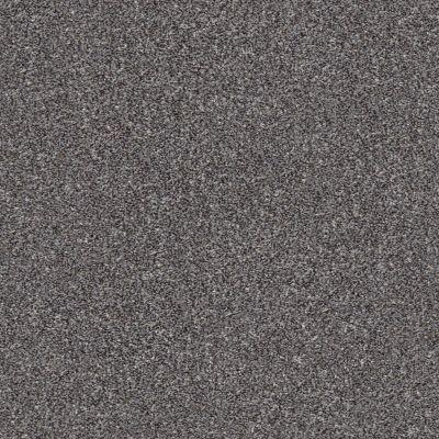 Shaw Floors Roll Special Xz164 Mocha 00723_XZ164