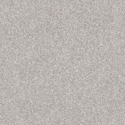 Shaw Floors Value Collections Xz165 Net Clay 00122_XZ165
