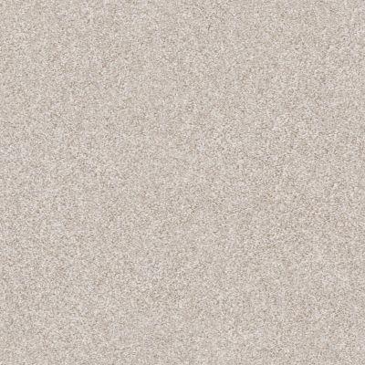 Shaw Floors Roll Special Xz166 Desert Light 00121_XZ166