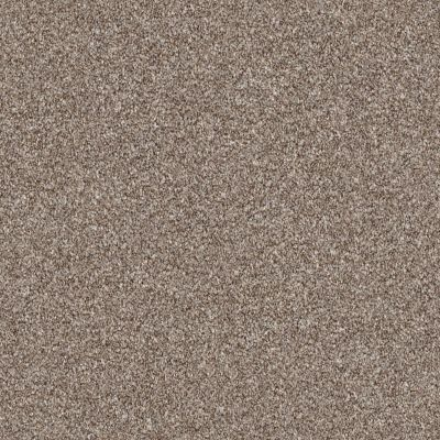 Shaw Floors Roll Special Xz166 Fox Hollow 00722_XZ166