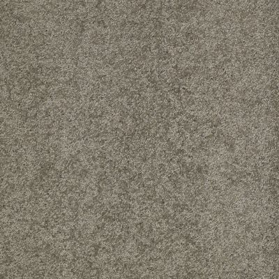 Anderson Tuftex Classics Emotions Steel Wool 00556_Z6582