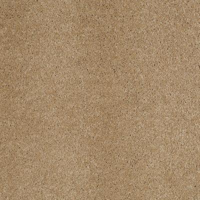 Anderson Tuftex So Amazing Maple Granola 00174_Z6583
