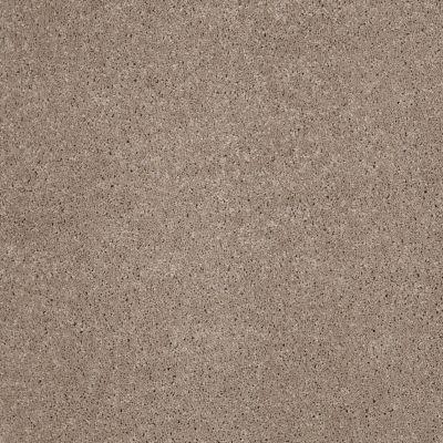 Anderson Tuftex So Amazing Mineralite 00574_Z6583