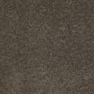 Anderson Tuftex So Amazing Stone Age 00577_Z6583