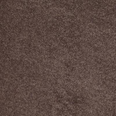 Anderson Tuftex So Amazing Smoky Quartz 00578_Z6583