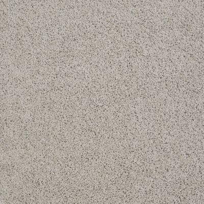 Anderson Tuftex Beverly Grove Gray Whisper 00515_Z6777