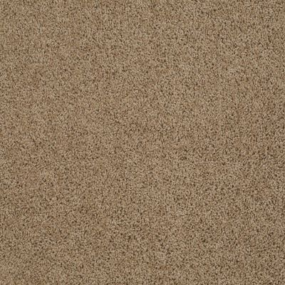 Anderson Tuftex Classics Beverly Grove Fine Umber 00726_Z6777
