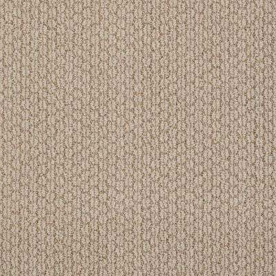 Anderson Tuftex Cathedral Hill Baked Beige 00173_Z6780