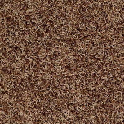 Anderson Tuftex Bling Cinnamon Swirl 00755_Z6809