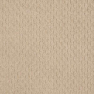 Anderson Tuftex Classics Casual Life Baked Beige 00173_Z6812