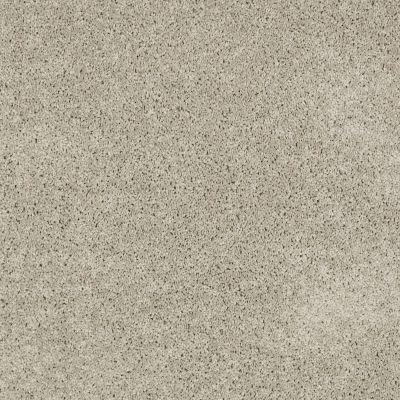 Anderson Tuftex Classics Serendipity I Gray Whisper 00515_Z6814