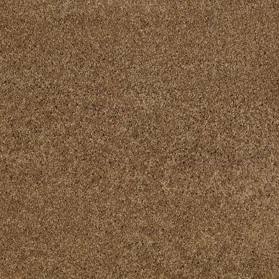 Anderson Tuftex Serendipity I Bronze Glow 00727_Z6814