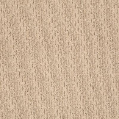 Anderson Tuftex Classics Casual Mood Big City Beige 00172_Z6820