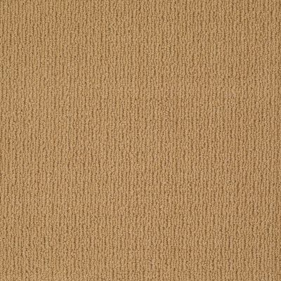 Anderson Tuftex Classics Casual Mood Colonial Gold 00226_Z6820