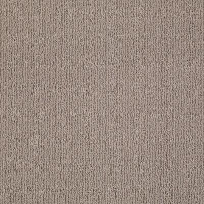 Anderson Tuftex Classics Casual Mood Birch Shadow 00555_Z6820