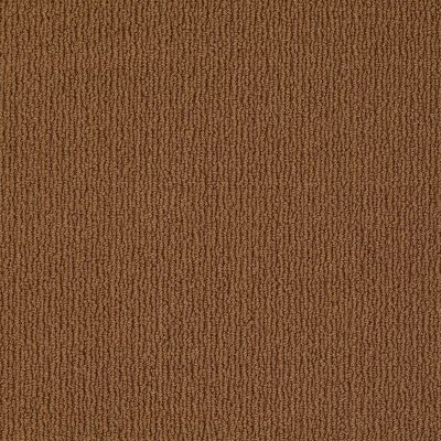 Anderson Tuftex Classics Casual Mood Modern Brown 00728_Z6820