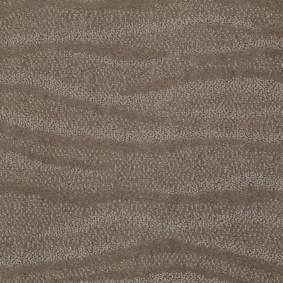 Anderson Tuftex Surf's Up Simply Taupe 00572_Z6822