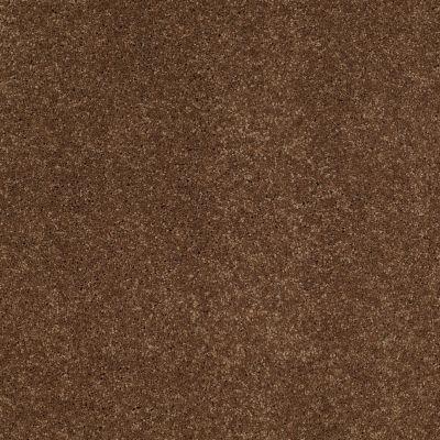 Anderson Tuftex Fantasy Vintage Brown 00775_Z6853