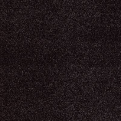 Anderson Tuftex Fantasy Wild Plum 00999_Z6853