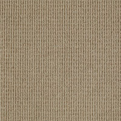 Anderson Tuftex Classics Something New Neutral Taupe 00572_Z6861