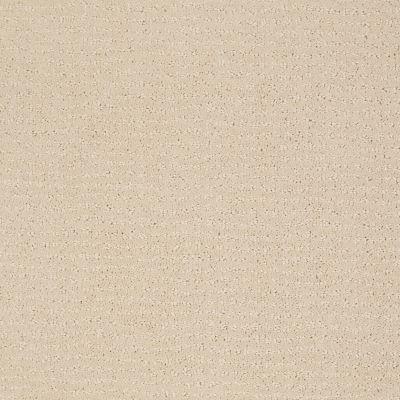 Anderson Tuftex Classics Vibe Macadamia 00122_Z6863