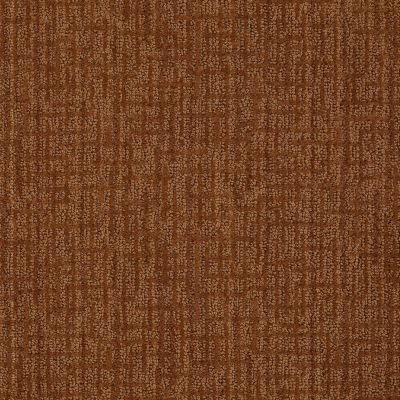 Anderson Tuftex Classics Mystic Charm Brandy 00675_Z6864