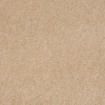 Anderson Tuftex Embrace Nevada Sand 00162_Z6865
