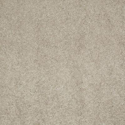 Anderson Tuftex Embrace Limestone 00552_Z6865